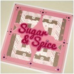 Sugar and Spice Card - Made With The Cricut Mini