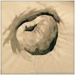 Portfolio Archive - Still Life - Apple