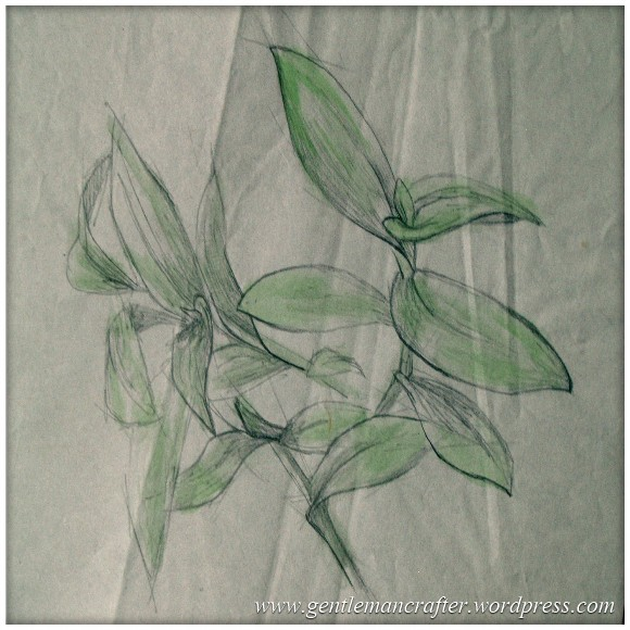 Portfolio Archive - Still Life - Plant
