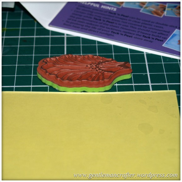Using Unmounted Stamps With The Inkadinkado Stamping Gear - Depth Check 2
