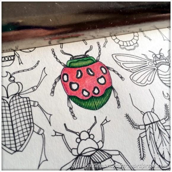 On The Coffee Table - Secret Garden by Johanna Basford - 7