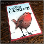 Robin Artist Trading Card Colouring In - 2
