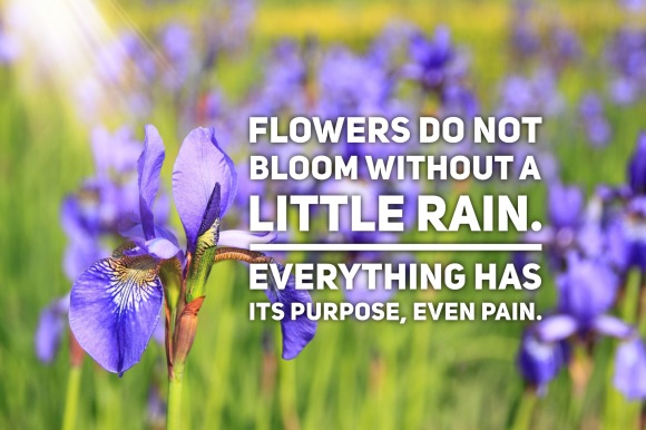 Flowers don't bloom without rain