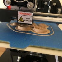 My First 3d Print with the Print Rite CoLiDo Compact 11