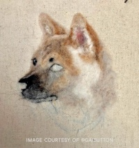 Needle Felted Pet Portrait by Gai Button (5)